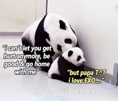 Unseen video of EXO's kung fu panda Tao and his dad. This makes me so happy...and sad lol #Kpop gif
