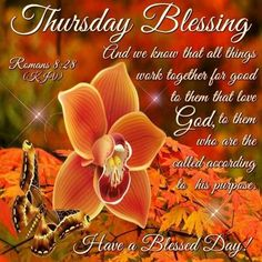 Thursday Blessing good morning thursday thursday quotes good morning quotes happy thursday thursday quote good morning thursday happy thursday quote beautiful thursday quotes thursday quotes for friends and family Good Morning Facebook, Good Morning Happy Thursday, Happy Thursday Quotes, Good Morning Thursday, Thankful Thursday, Good Morning Greetings, Thursday Images, Happy Week, Morning Inspirational Quotes