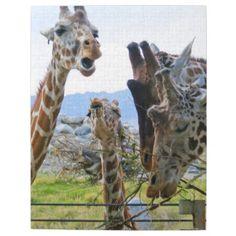 Gossiping Giraffes Puzzle