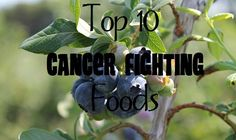 Top 10 Cancer Fighting Foods :: via Kitchen Stewardship ~~ The top 10 cancer-fighting fruits and veggies that I encourage anyone to simply consume more often.