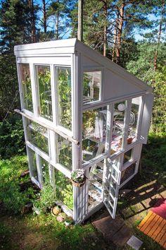 2-kerroksinen kasvihuone vanhoista ikkunoista She Sheds, Old Windows, Healthy Vegetables, Gardening Tips, Cottage, Outdoor Structures, Window Ideas, Greenhouses, Shelters