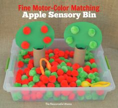 Apple sensory bin for fine motor practice and color matching. Great for preschoolers and can be switched up with words for kindergartners.