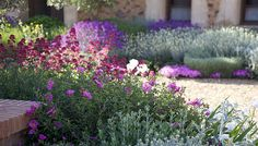 Jardin Toledo 2009: Gravel garden, xeriscaping, dry garden, mediterranean garden.