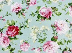 Roses Land 14