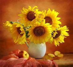 Still life sunflowers.