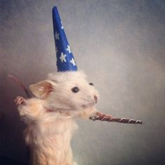 Expelliarmouse  Cute Wizard Mouse Casts a Spell by MortuaryReport, $100.00