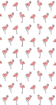 #Flamingo #Pattern / Download more #fancy #iPhone #Wallpapers at @prettywallpaper
