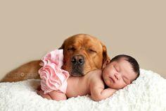 Cachorros grandes e crianças - LeoeLu
