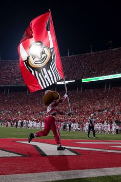 Brutus!!! #OhioStateNut The Ohio State University Buckeyes!