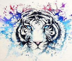 Draw Tigers White Tiger painting by Louise Terrier Watercolor Tiger, Tiger Painting, Watercolor Paintings, Watercolor Galaxy, Tiger Drawing, Tiger Art, Animal Paintings, Animal Drawings, Art Drawings