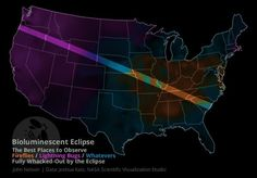 The best places to observe bioluminescent insects fully whacked-out by the Eclipse Solar Eclipse Viewing, Birds Eye View Map, United States Map, The Good Place, Insects, Journey, America, Places, Map Of Usa