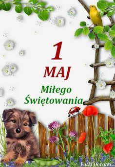 1. Mai, Public Holidays, Herbs, Humor, Maj, Appliques, Riveting, Humour, Herb