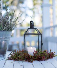 Sommarbacka: SYKSYÄ RAPPUSELLA | HÖSTFINT PÅ TRAPPAN