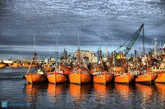 Puerto, Mar del Plata, Argentina @Nicodalo ©