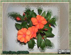 pistike-piros-2013-03-06-http---goo.gl-HUkBh, via Flickr.