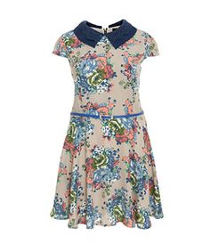 null (Multi Col) Koko Stone and Blue Floral Crochet Collar Dress | 280549499 | New Look