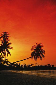 ✮ Indonesia - Bintan Island Resort Beach at sunset