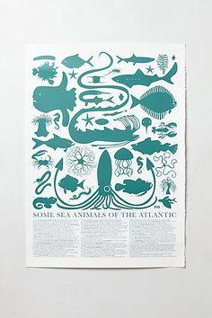 atlantic sea creatures print