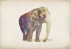 elephant galaxy
