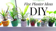 Five Planter. Plant Pot Ideas using Recycled Materials | Summer Room Decor |  by Fluffy Hedgehog