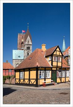 Ribe, De oudste stad in Denemarken