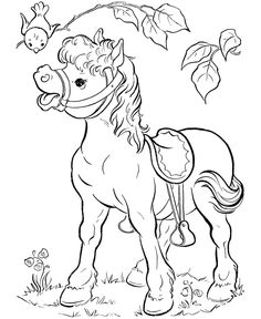 Three horses roaming wildhorse