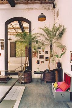 A touch of green at Good Earth Store, Raghuvanshi Mills, Mumbai Girls Bedroom Colors, Bedroom Wall Colors, Boho Bedroom Decor, Indian Interiors, Bedroom Wall Designs, Garden Route, Indian Homes, Earth Homes, Indian Home Decor