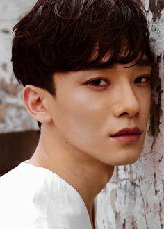 kim jongdae : chen : exo