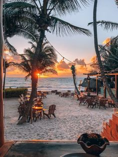 8 Spectacular Things To Do In Tulum Mexico - The Wandering Queen - 8 Spectacular Things To Do In Tulum Mexico – The Wandering Queen - Cozumel Mexico, Beautiful Places To Travel, Romantic Travel, Romantic Vacations, Couple Travel, Family Travel, Mexico Culture, Visit Mexico, Photos Voyages
