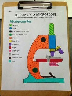 biology classroom Microscopes are cool and lots of fun, but its important that you know how to use everything on it and know how it works. This printable label and color sheet is just the thing you need to get started! Science Cells, Science Biology, Teaching Biology, Science Education, Life Science, Ap Biology, Physical Science, Science Labs, Earth Science