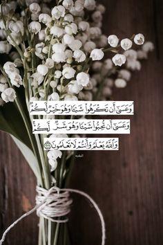 Quran Quotes Love, Quran Quotes Inspirational, Beautiful Islamic Quotes, Allah Quotes, Beautiful Arabic Words, Arabic Love Quotes, Muslim Quotes, Quran Arabic, Islam Quran