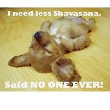 funny yoga quotes - Google Search