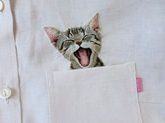 Image result for pocket embroidery