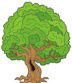 39 Clipart Plants Trees Etc Ideas Clip Art Plants Trees To Plant