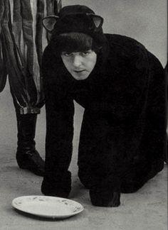 Paul McCartney being a cat