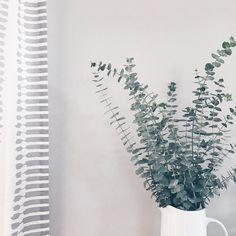 Eucalyptus #home #homedecor #greenery #eucalyptus #plant #fierofamilyhome