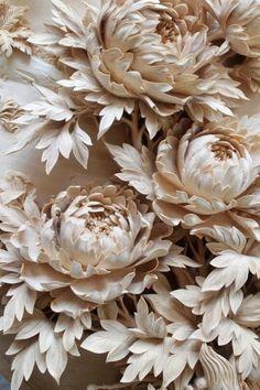 White Flowers Flickr.com