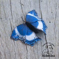 Брошь из кожи Бабочка Саламис Темора – купить в интернет-магазине на Ярмарке Мастеров с доставкой - F5QTDRU