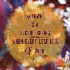 #autumn #spring #flower #leaf #quotes
