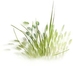 Landscape Sketch, Landscape Plans, Landscape Design, Landscape Structure, Deck Design, Tree Plan, Garden Drawing, Plan Drawing, Garden Architecture