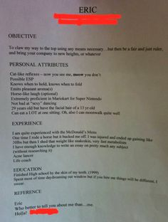 funny job application