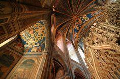 La cathédrale à Albi plaira aux amateurs d'architecture, d'esthétisme et de visites. #Albi #france