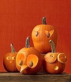 Abóboras bem-humoradas para enfeitar o Halloween | Vila do Artesão