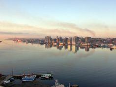 Halifax Harbour by Rexton, via Flickr Canada Cruise, Canada Travel, Canada Trip, Seattle Skyline, New York Skyline, Dartmouth, The Province, Nova Scotia, Canadian Horse