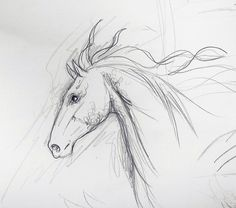 Horse sketch  by ~nightlight13