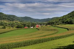 """A few reasons why an intern is leaving the driftless region """"humbled, inspired, and motivated by the goodness encountered here. Farming System, Reasons To Live, Iowa State, Natural Living, Wisconsin, Beautiful Places, Scenery, Environment, World"""