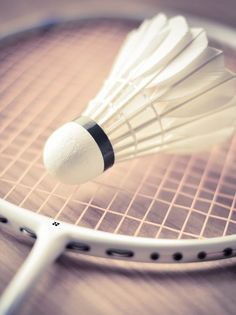 Badminton a spot that doesn't get enough recognition but is fun because it incorporates tennis and volleyball Badminton Sport, Badminton Racket, Badminton Birdie, Badminton Tournament, Badminton Pictures, David Laid, Player Quotes, Bodybuilding, Sports Day