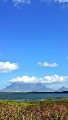 First day of spring 2014 in Cape Town. #spring #capetown