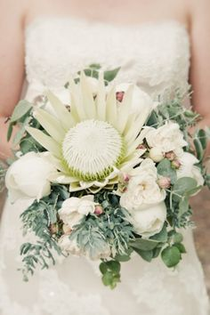 protea bouquet. love this exotic flower. Perfect assemblageッ