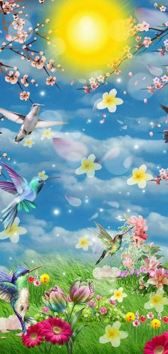 Hummingbird, Aquarium, Wallpaper, Animals, Goldfish Bowl, Animales, Animaux, Aquarium Fish Tank, Wallpapers
